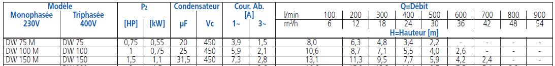 caractéristiques pompe EBARA DW 100 eaux usées