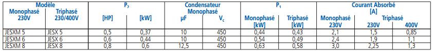 tableau prestations pompe EBARA JESX usage domestique