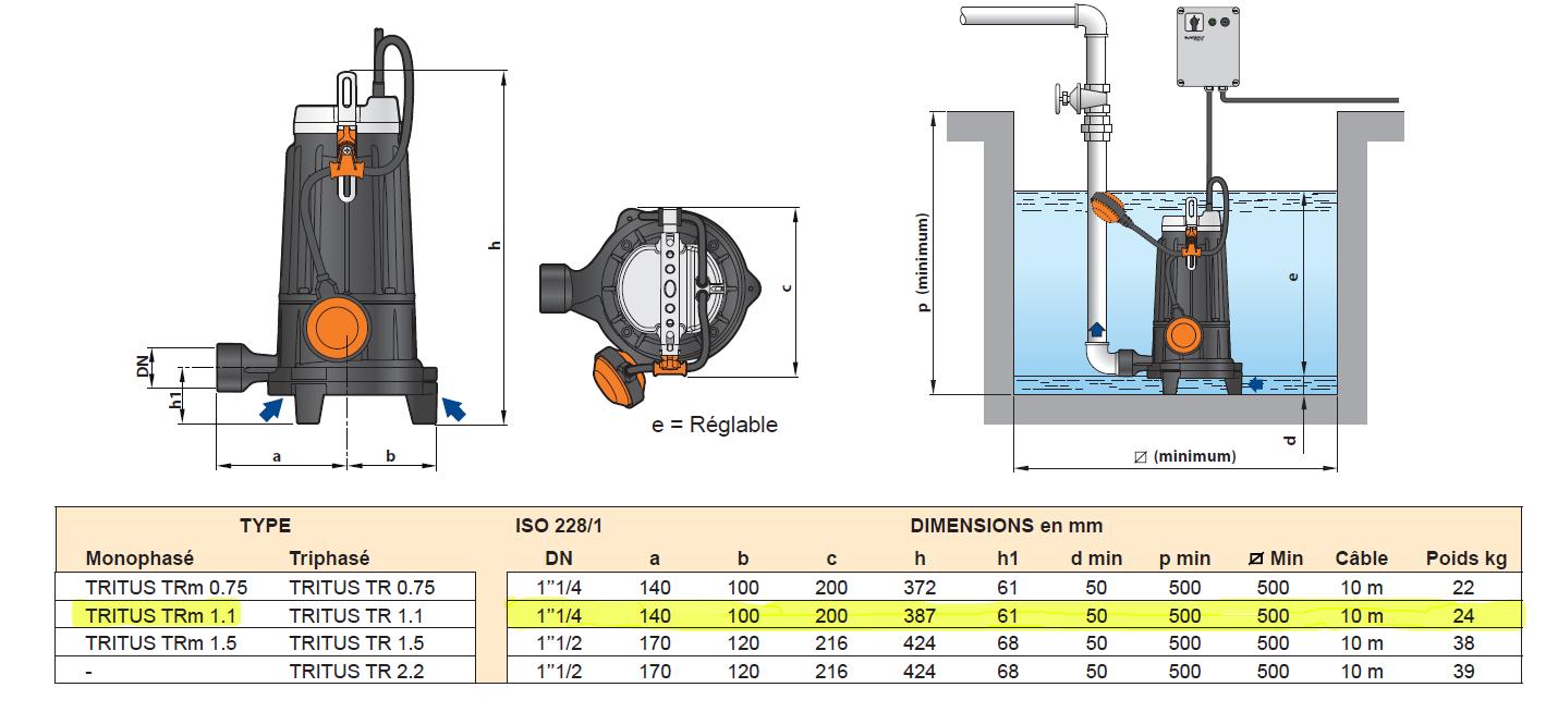 Installation pompe PEDROLLO TRITUS TRm1.1